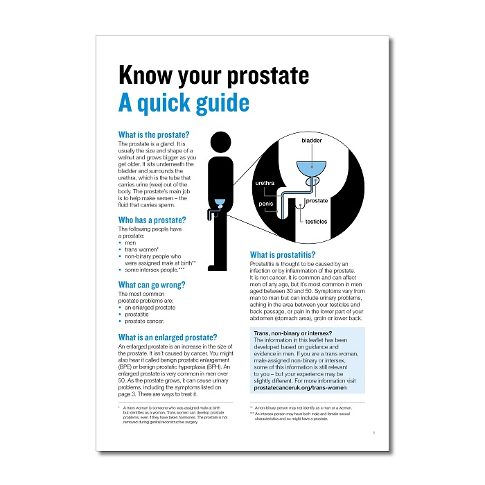 Know your prostate: a quick guide